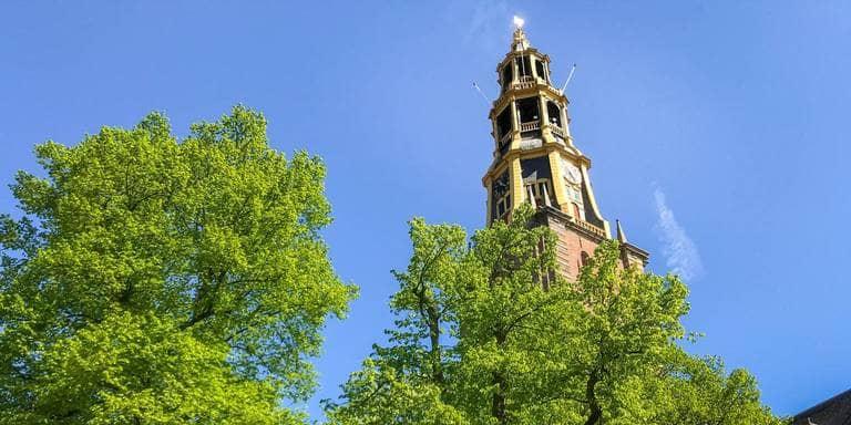 Opinie: Maak van oude bomen monumenten