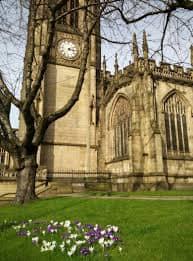 Bomen leveren Manchester jaarlijks £33 miljoen op